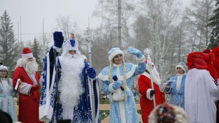 Стала известна программа визита Деда Мороза в Самару