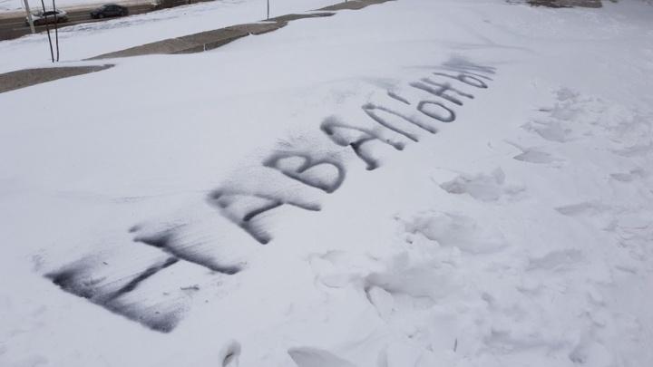Выпавший в Волгограде снег развязал руки местным оппозиционерам