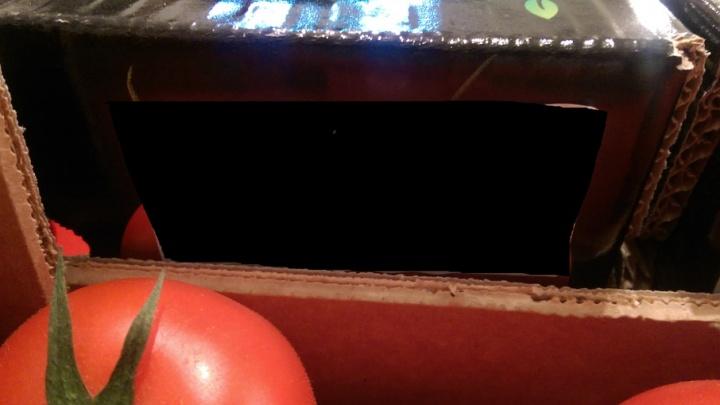 В Самару не пустили 3600 кг китайских помидоров