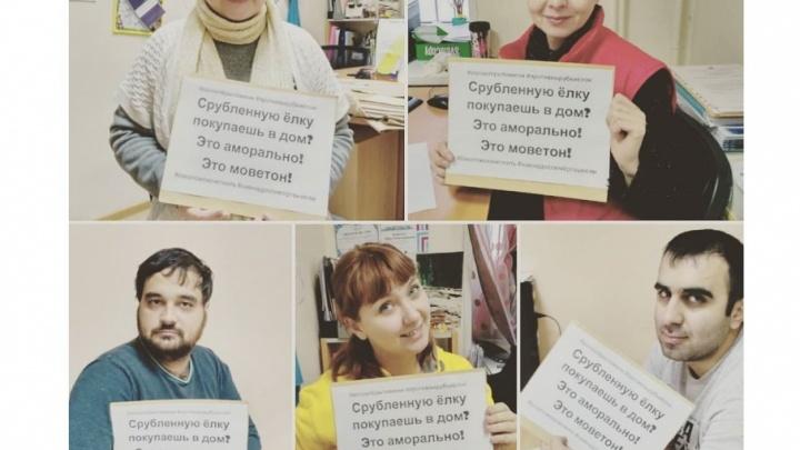 Тюменцы запустили в интернете флешмоб против вырубки и покупки живых елей к Новому году