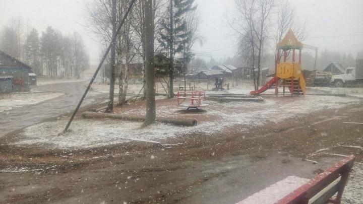 На северо-западе Поморья выпал майский снег