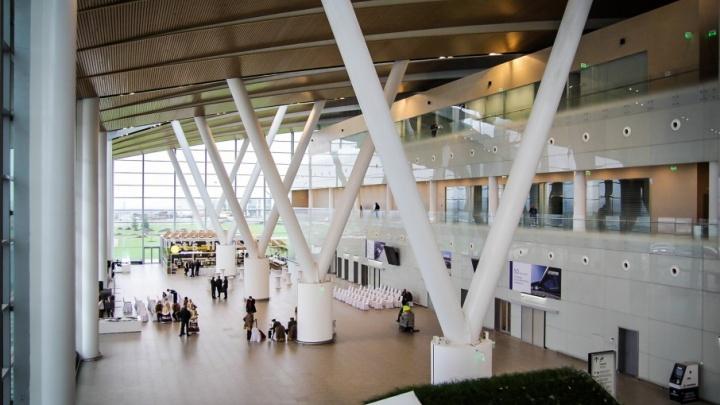 Шуфутинский оценит: для пассажиров Платова закупят сиденья на 420 человек