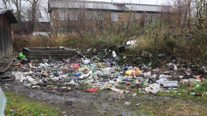 Убеждение и наказание: администрация Архангельска озвучила методы борьбы со стихийными свалками