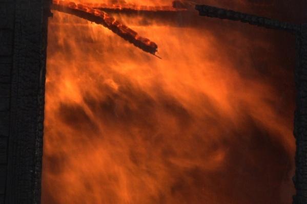 По словам хозяев, причиной пожара мог стать поджог