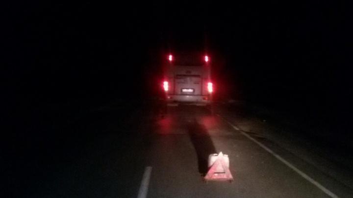 На южноуральской трассе автобус насмерть сбил пешехода