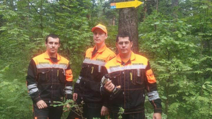 В ярославских лесах развесили указатели для грибников