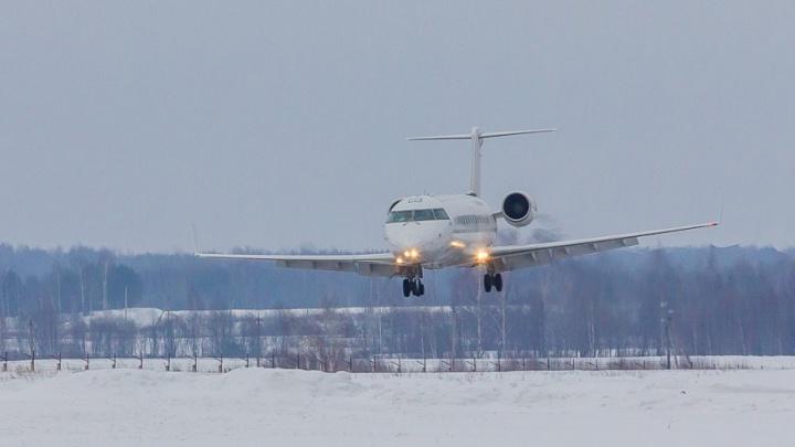 Ярославский депутат предложил построить вместо Туношны новый аэропорт