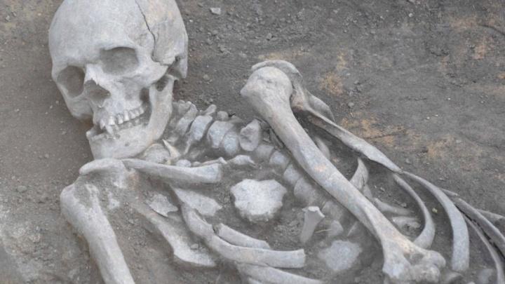 Человек эпохи бронзы: челябинские археологи нашли погребение с тысячелетней историей