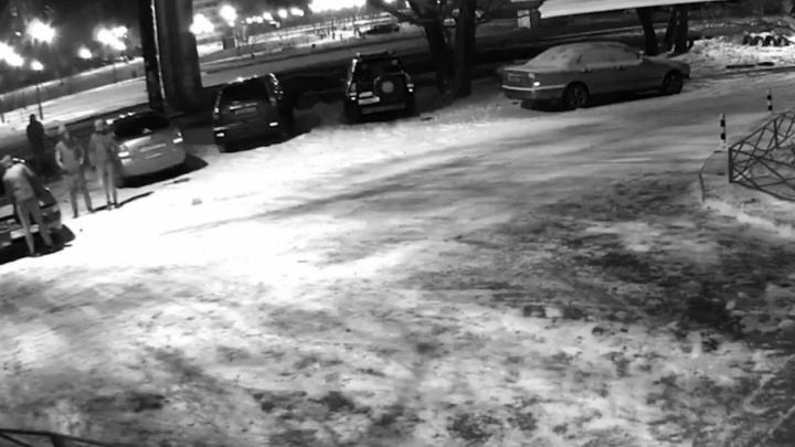 Неудачная попытка кражи аккумулятора в челябинском дворе попала на видео