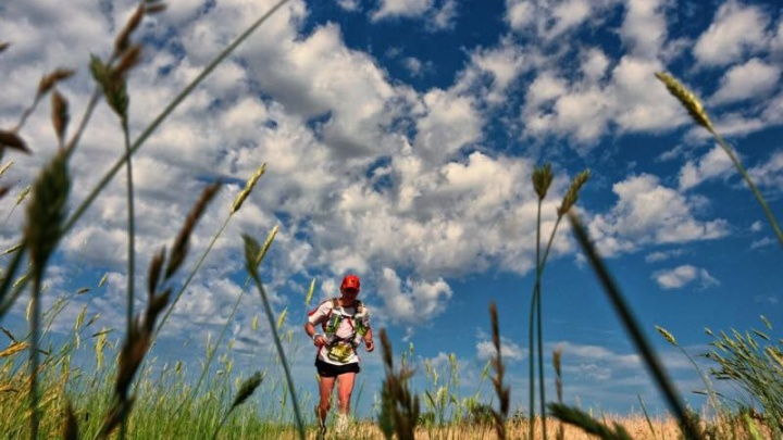 Под Волгоградом марафонцы пробегут 162 километра вокруг Эльтона