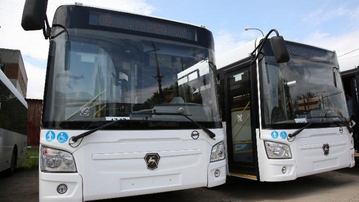 На маршруте №98 Волгограда пустят дополнительные автобусы