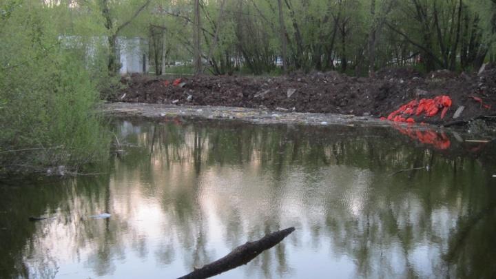 Педуниверситету придется восстановить скандально известный пруд Сухой