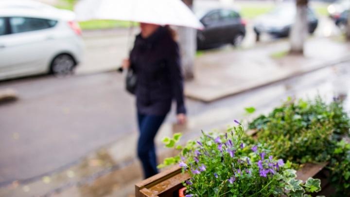 Дожди и грозы вместо солнца: когда в Ярославле резко изменится погода