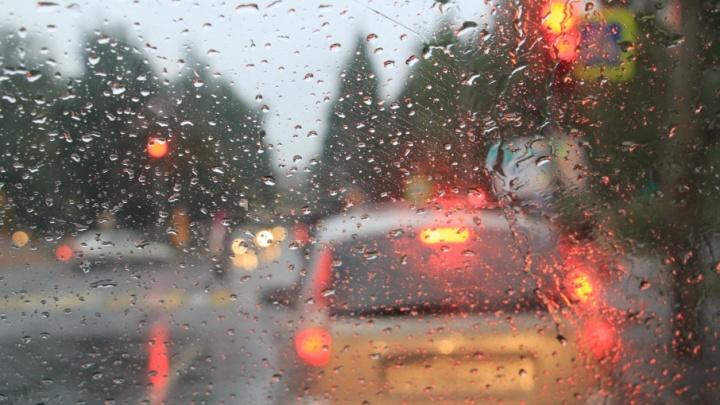 Мелкий дождь и туман будут ждать жителей Архангельской области на выходных
