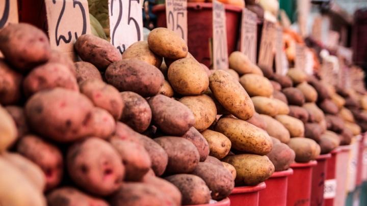 У жителей Ростовской области отобрали «подозрительные» овощи и фрукты, перевозимые из Украины