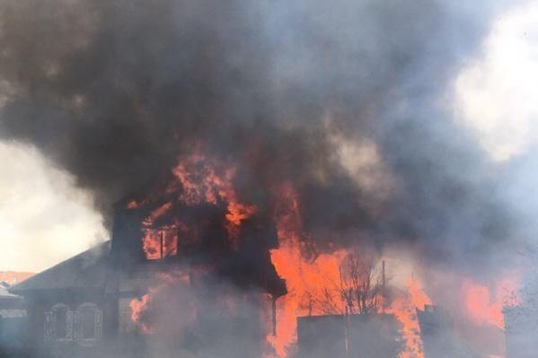 Пожарным не удалось спасти четвероногих