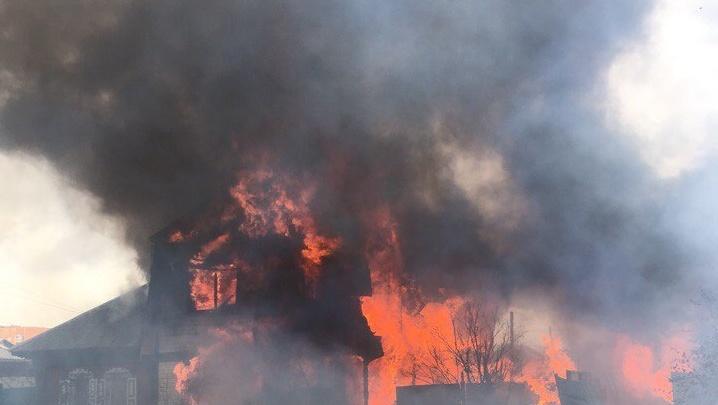 В пожаре на Братской в Тюмени погибли больше десяти собак