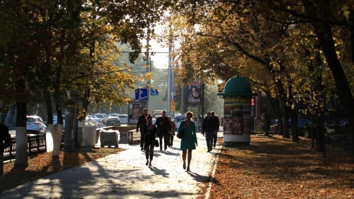 «Упадок сил и хандра»: ростовчане рассказали, как на них влияет осень