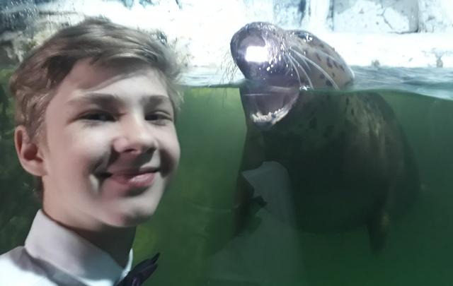 Волгоградские школьники сняли лучший фильм о мыслях тюленей