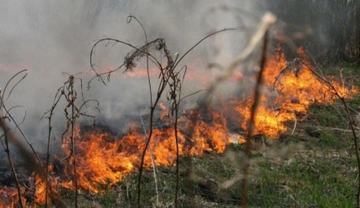 «Пламя может перекинуться на дома»: самарцев просят не выжигать сухую траву