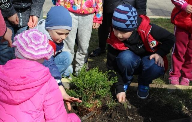 В ближайшую субботу ростовчане могут поучаствовать в празднике древонасаждения