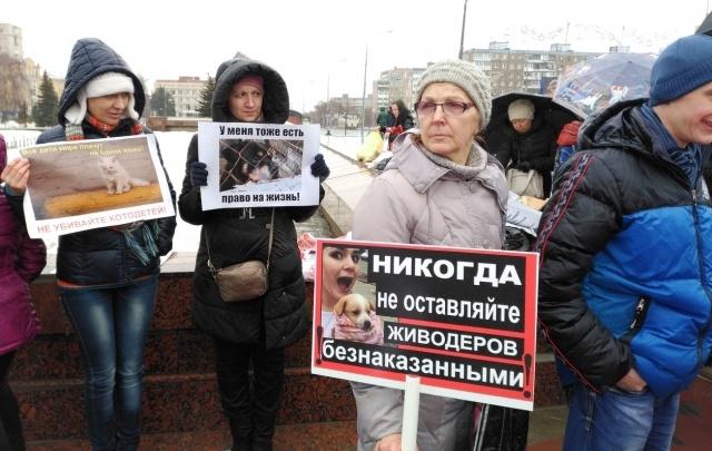 В Самаре зоозащитники вышли на митинг против дельфинариев и за стерилизацию уличных животных