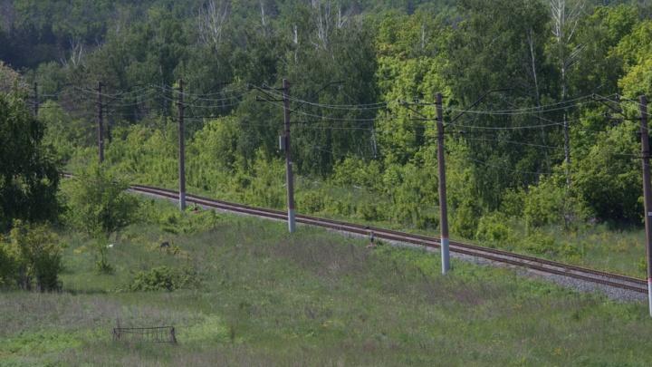В Самарской области грузовой поезд сбил насмерть молодого мужчину