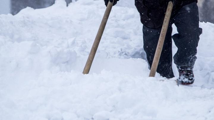 В Поморье мать-алиментщицу отправили за решетку за неубранный снег