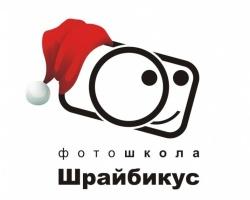 Новогодний экспресс-курс от фотошколы «Шрайбикус»