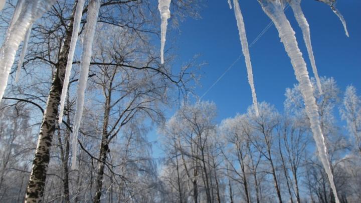 Морозы придут в Архангельскую область в середине недели