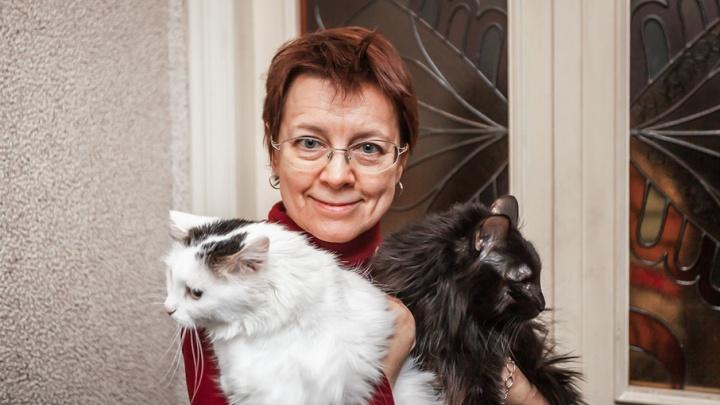 Инженер челябинского оборонного завода спасает бездомных кошек