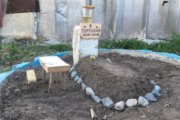 «Могила торговли» находится около одного из ангаров на мебельной базе