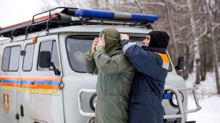 Кинолог с собакой и водолазы спасали в Ярославле человека: что произошло на Центральном пляже