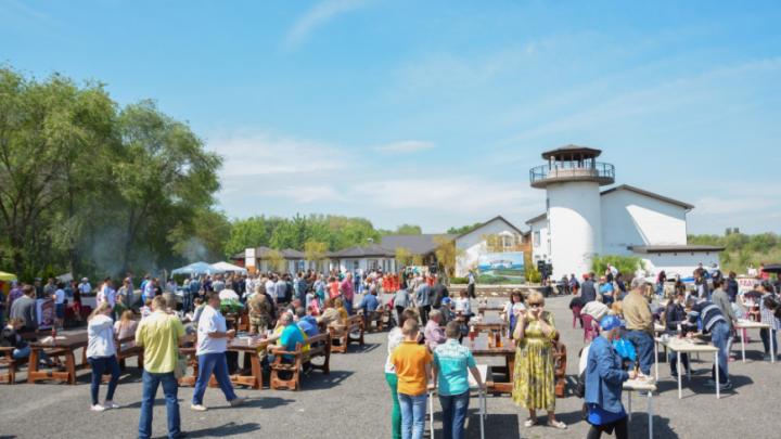 В Ростове провели фестиваль донской селедки