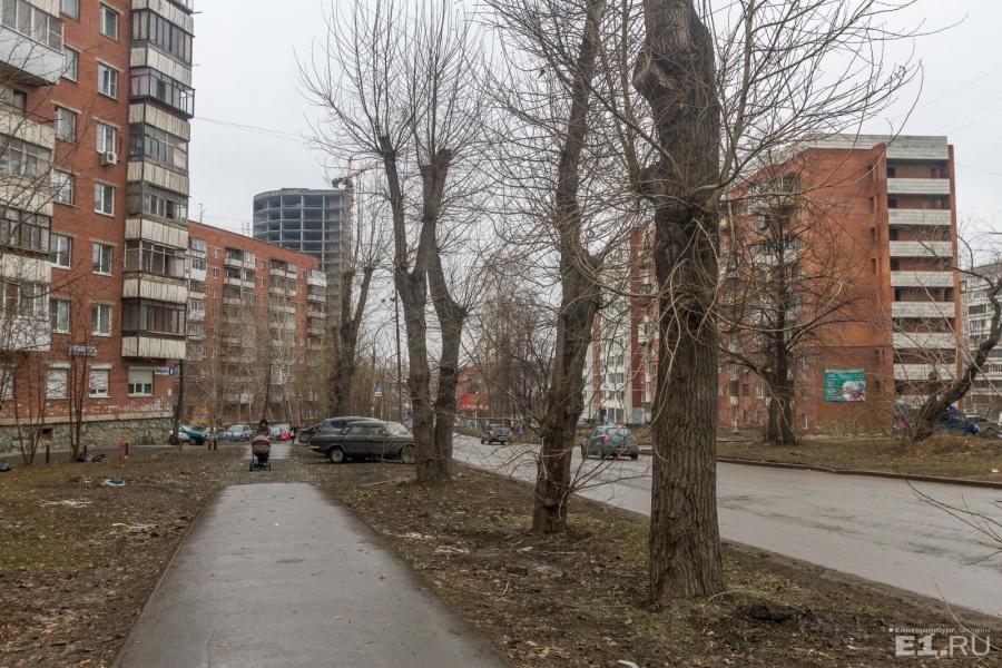 В конце улицы виднеются стройки.
