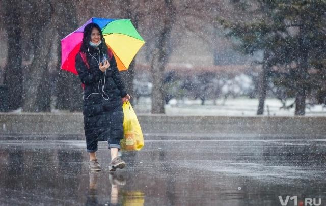 В Волгограде выпал первый весенний снег