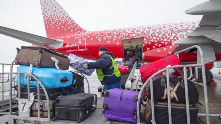 В аэропорту Курумоч в печь отправили партию молока, творога и меда