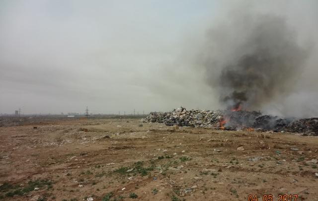 Причиной пожара на травящей Волгоград свалке называют поджог