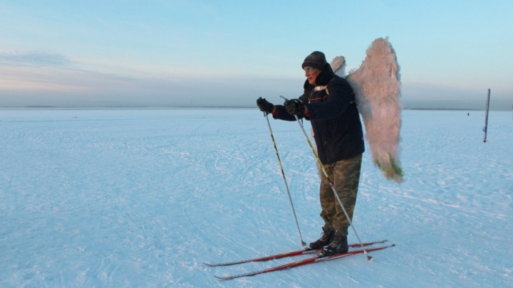 Древарху, вышедшему на лед, потребовалась помощь спасателей