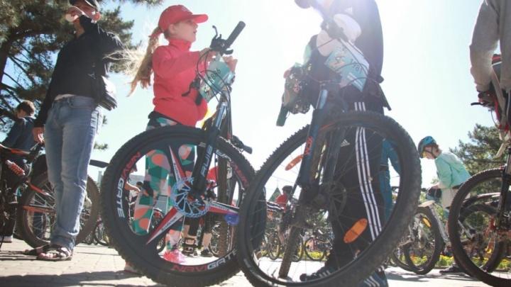 Пять тысяч велосипедистов проехали по центру Ростова за несколько часов