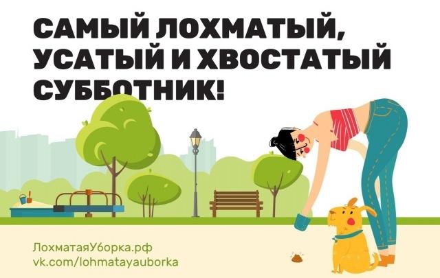 Выходные с V1.ru: «Лохматая уборка», концерт Наргиз Закировой и калмыцкий праздник весны