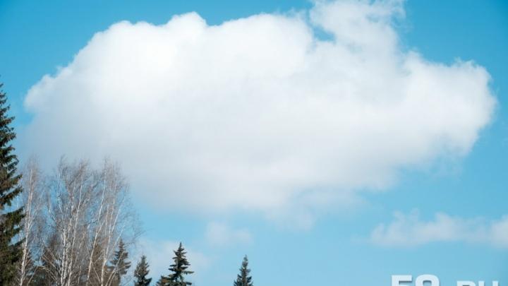 В начале следующей недели в Прикамье потеплеет до +17 градусов