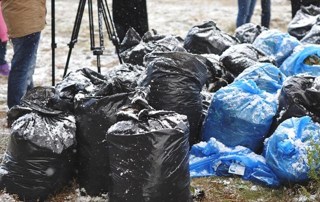 Тюменцев приглашают на уборку берегов Полевого пруда