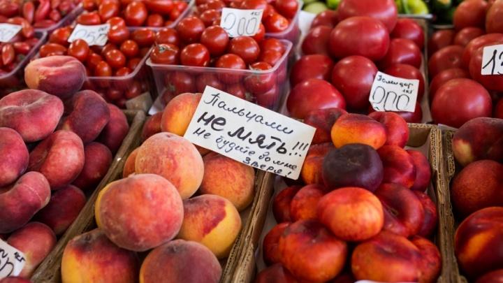 Медведев разрешил ввозить в Россию турецкие помидоры