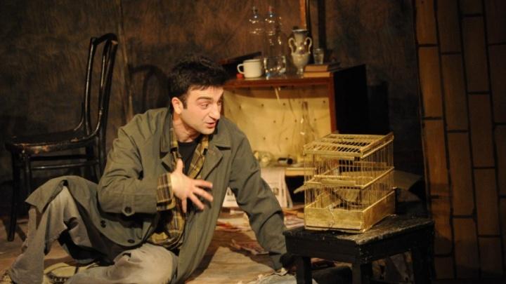 Завтра попугай из челябинского приюта сыграет роль в спектакле на «Камерате»