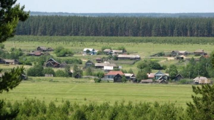 Две сызранские пенсионерки заблудились в лесу возле села Рамено