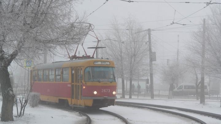Волгоград промозглый: туманное воскресенье безлюдного города