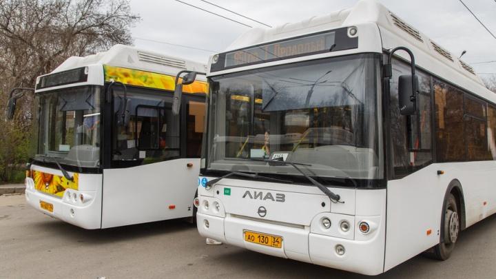 В Волгограде закупают 25 автобусов для троллейбусных маршрутов