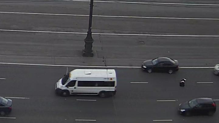Прыжок женщины из маршрутки в центре Челябинска попал на видео