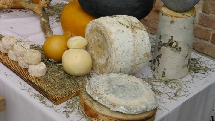 В Ярославле придумали новый сыр